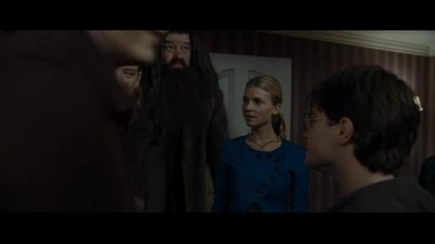 Náhled Harry Potter a Dary smrti 1 (Harry Potter and the Deathly Hallows - Part 1 (2011) SK.avi (7)