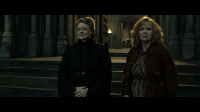 harry-potter-8.mkv (17)