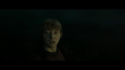 harry-potter-8.mkv (10)