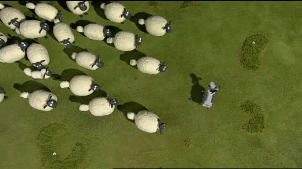 Ovecka Shaun - Shaun the Sheep CZ 01x36 [36].avi