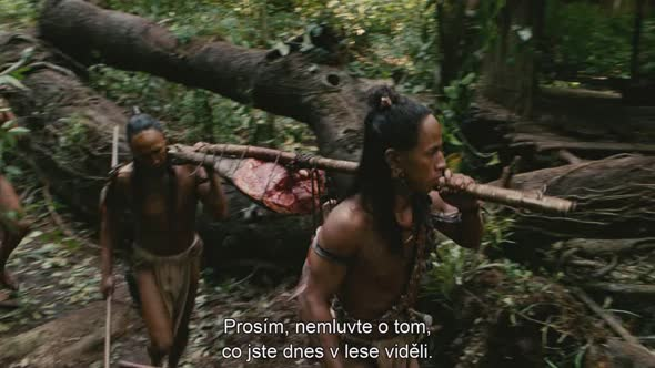 Apocalypto.2006.BDRip.720p.avi (5)
