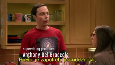 The.Big.Bang.Theory.S11E12.The.Matrimonial.Metric CZ Titulky.avi