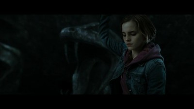 harry-potter-8.mkv (14)