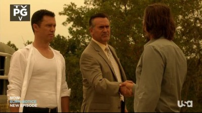 Burn.Notice.S07E08.HDTV.mp4
