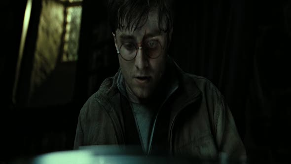 harry-potter-8.mkv (6)