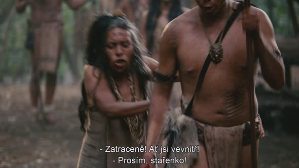 Apocalypto.2006.BDRip.720p.avi (6)