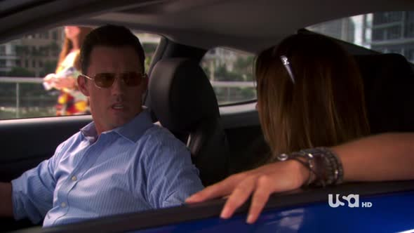 Burn.Notice.S04E16.Dead.Or.Alive.HDTV.XviD-FEVER.avi