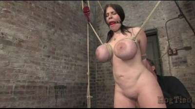 daphne-s-all-tied-up.mp4 (6)