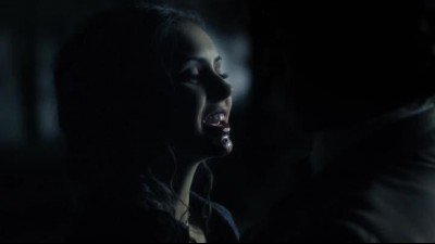 the.vampire.diaries.s08.special-forever.yours.hdtv.x264-Nicole.mkv